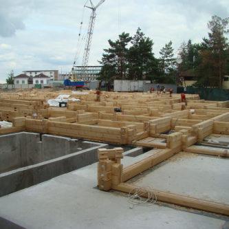 Строительство коттеджей с дерева Киев